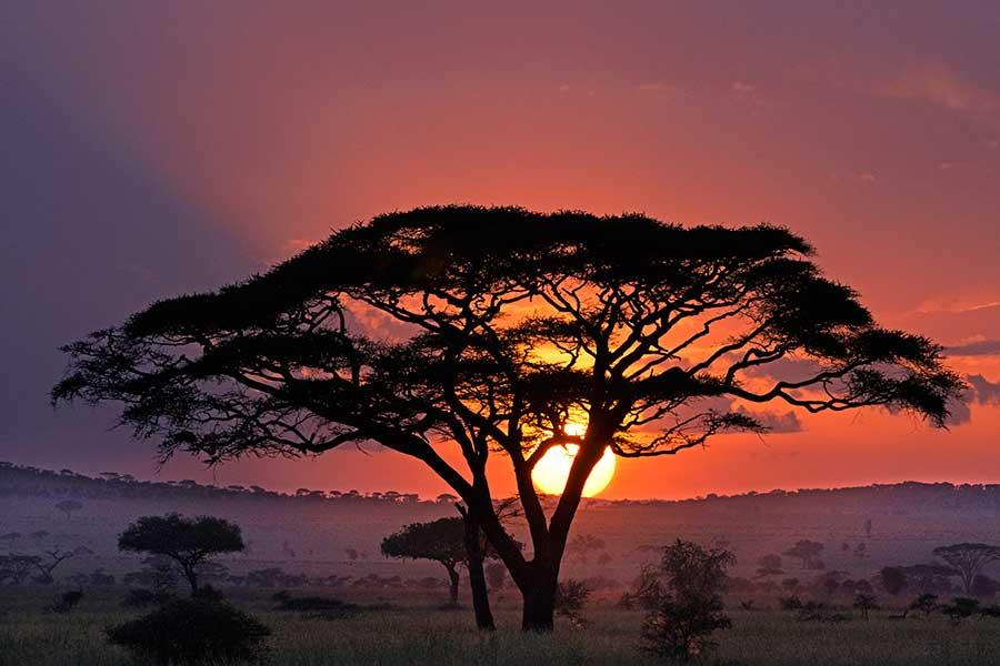 Benny-Rebel-Fotoreise_Fotosafari-Tansania-Ruanda-Afrika_A4