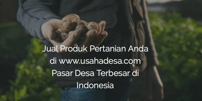 Pasar Pertanian Desa