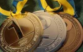 Волейболісти з Бердичева вибороли кубок до Дня Європи в Житомирі