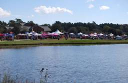 The Goose Creek Fall Festival drew a large crowd and a wide array of vendors in 2015.
