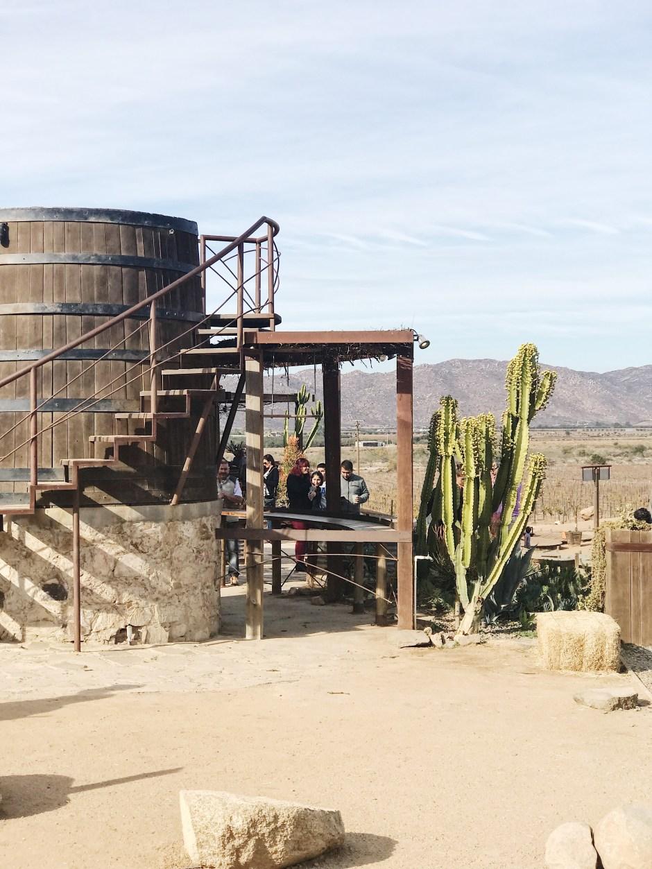 visit ensenada mexican wine country