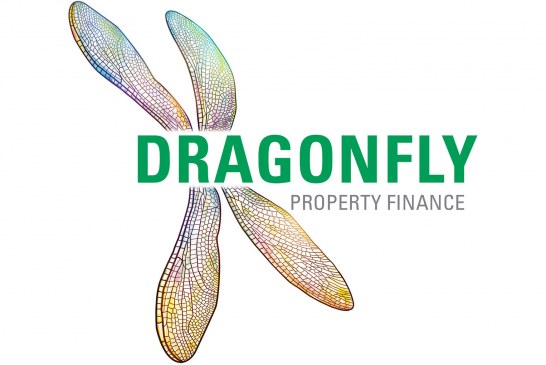Dragonfly appoints portfolio manager