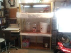 Simple Homebrewing Setup