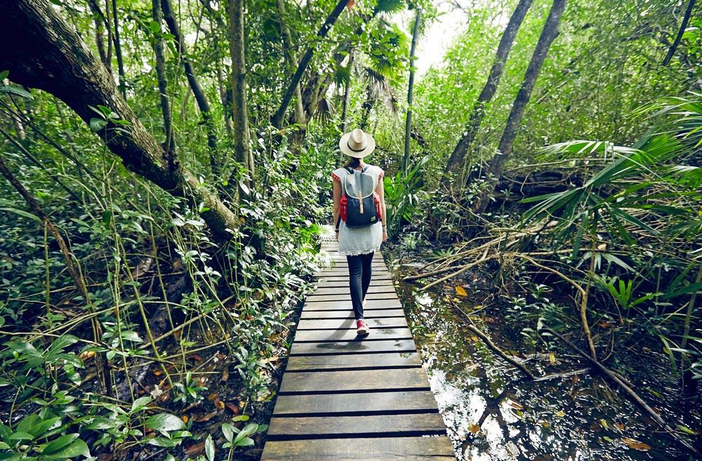 Reserve Naturelle Yucatan Mexique