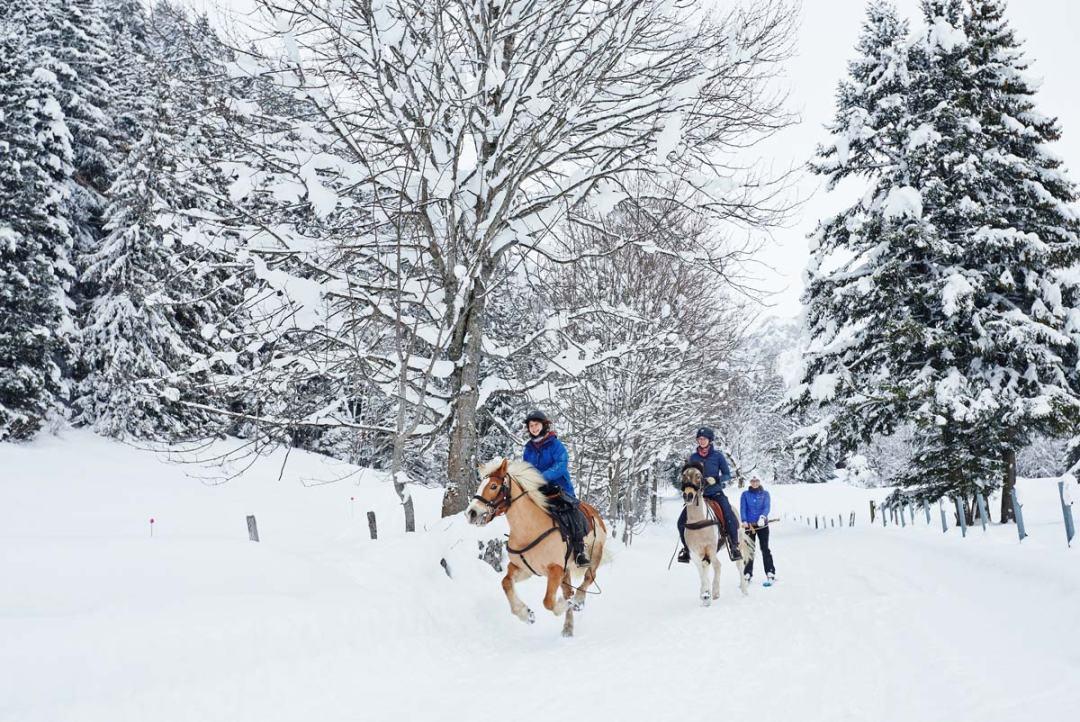 Ski-Joering-Suisse