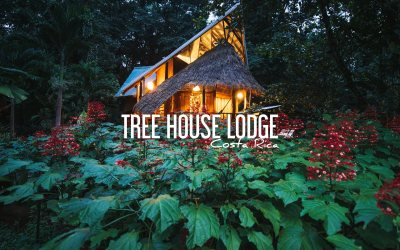 COSTA RICA | Un ECO-LODGE entre MER DES CARAIBES et JUNGLE
