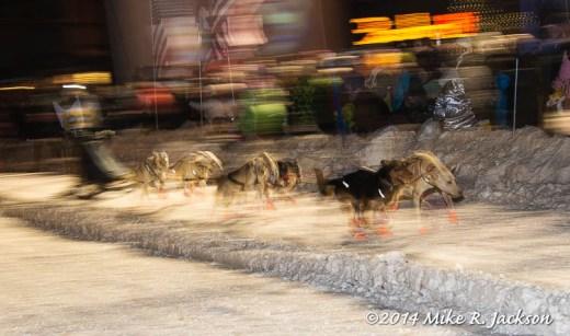 Web Sled Dog Race Blur Jan31