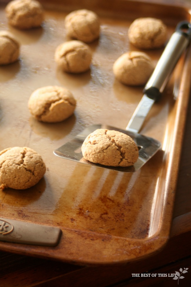 gluten-free honey cookies www.bestofthislife.com