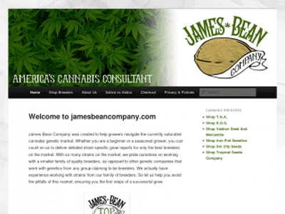 James Bean Company Review