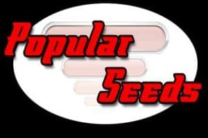 Popular Seeds Review