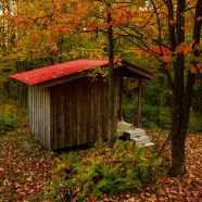 Tool shed in fall