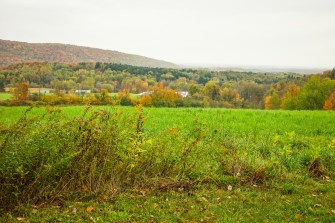 Fall foliage over the valley