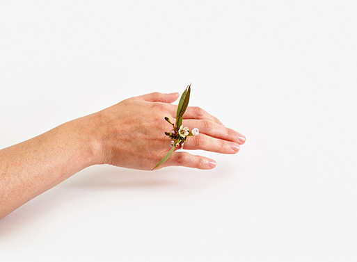 Ikebana Ring