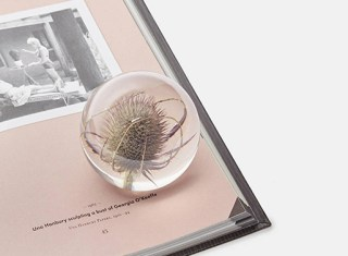 Teasel-paperweight