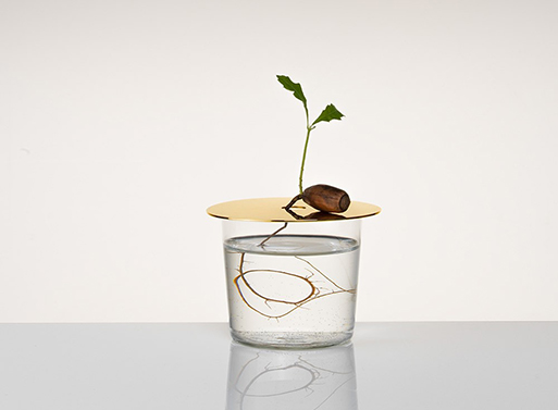 Floating Forest Disk by Michael Anastassiades