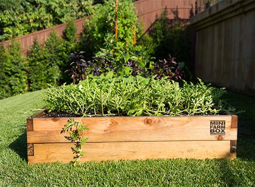 Minifarm Raised Garden Bed