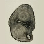 woodcut_book05