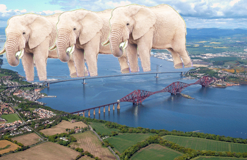 elephantbridge