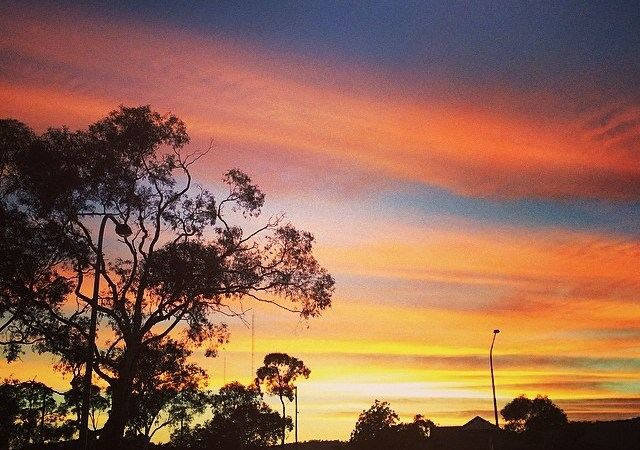 Gorgeous sunrise this morning when I was hitting the gym.