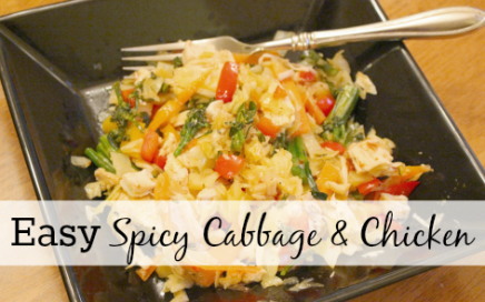 Easy Spicy Cabbage and Chicken