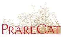 prairiecat logo