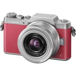 Small Crop Of Fujifilm X A2