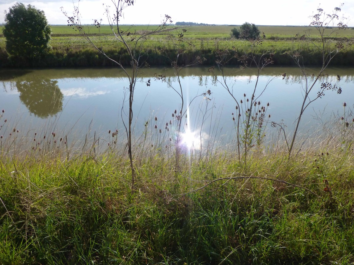 Photograph of sun shining on French canal with fields in the background.