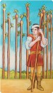 Nine of Wands Tarot Card Meanings