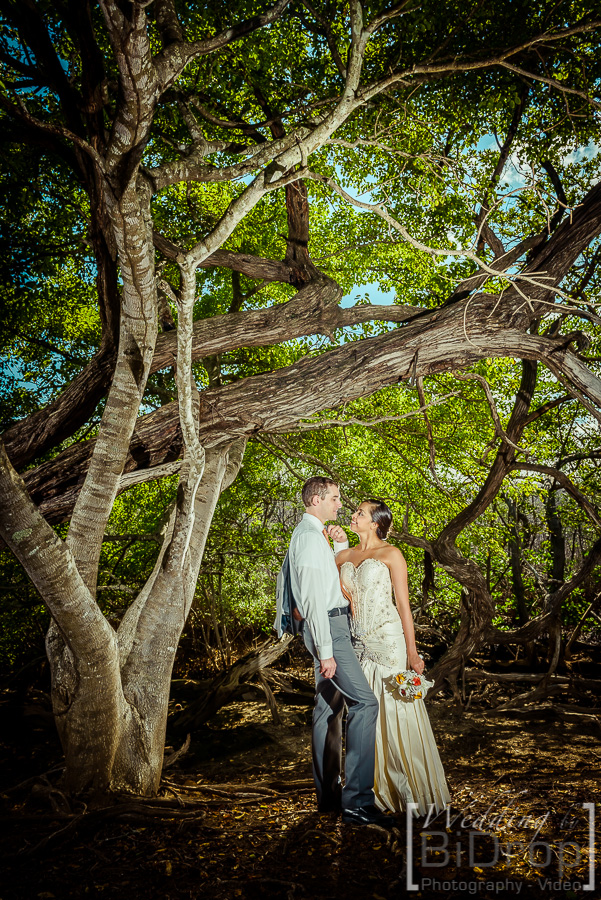 Wedding-by-bidrop-costa-Rica-140906-085545