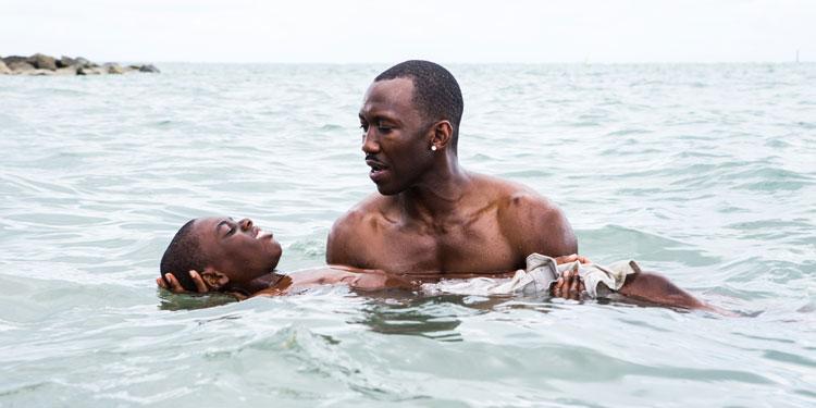 Gay-Themed Moonlight Scores Highest Per-Screen Average Of 2016