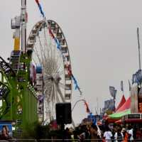 Houston Rodeo: Discount Carnival Tickets, Admission Discounts, Entertainment Schedule & Tips from a Rodeo Insider!