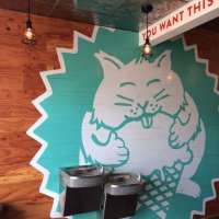 Fat Cat Creamery - Our Search for Houston's Best Restaurants for Kids!