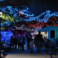 Things to do in Houston today, and this weekend, with kids! December 8, 9, 10, 11, 12, 13, 14, 2016