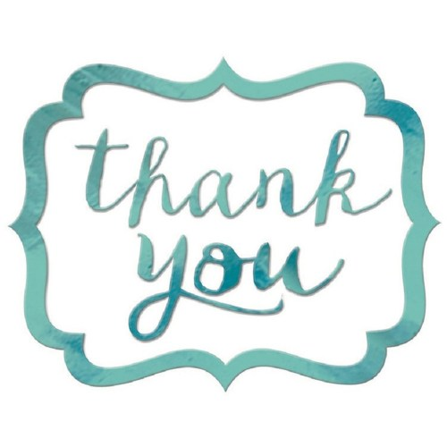 Horrible Wedding Favors Thank You Stickers Pack Robins Egg Blue Thank You Stickers Pack Robins Egg Blue Big W Thank You Stickers Bridal Shower Thank You Stickers