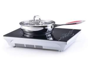 Induction Cookers in India: Analysis of brands, working costs, prices and efficiency.