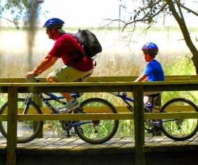 cycling-1024x564