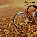 Autumn Bike by Bart Heird via Flickr