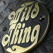 wild thing cover