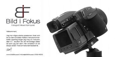Bildifoks-presentation-web