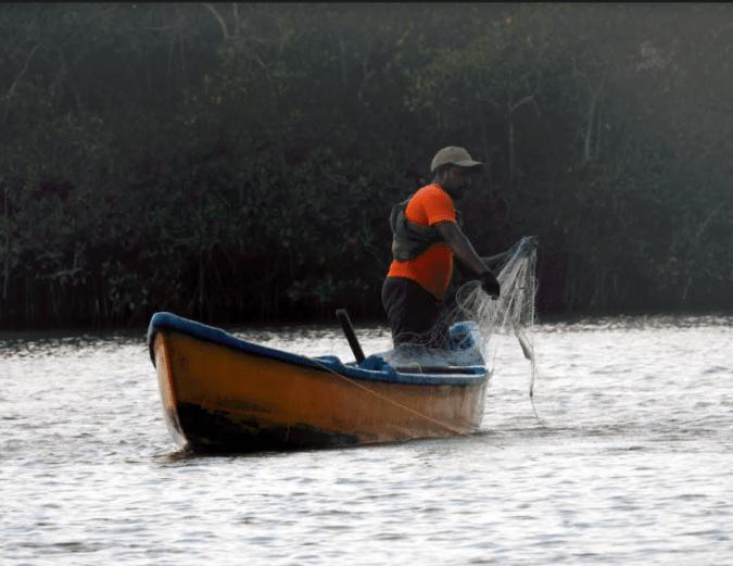 A boatman in Pichavaram's Mangroves