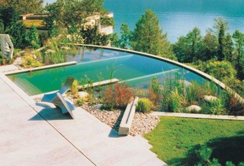 Piscinas ecol gicas o naturales una buena opci n bioark for Construccion piscinas naturales
