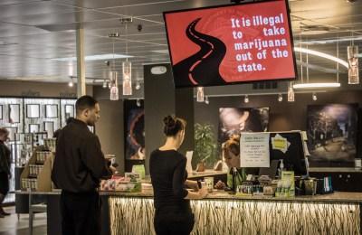 WEB_Marijuana