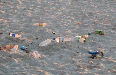 plastic_bottles_on_beach.jpg.662x0_q70_crop-scale