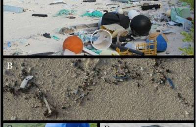 plastic_debris_on_Henderson_Island.jpg.650x0_q70_crop-smart