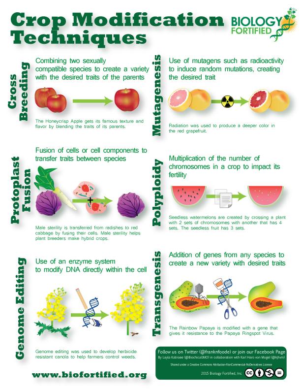 Ulike metoder for å modifisere planter.