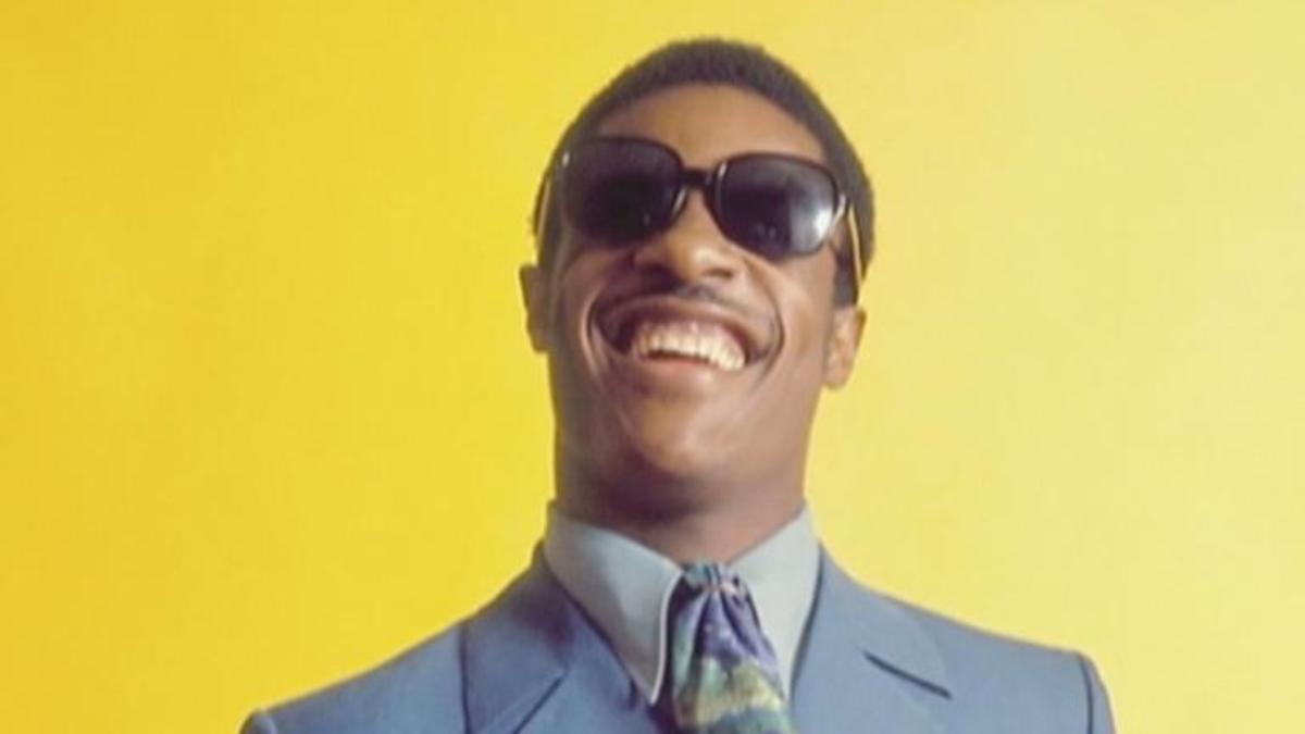 Stevie Wonder   Singer  Songwriter  Music Producer  Pianist     Stevie Wonder   Singer  Songwriter  Music Producer  Pianist  Musician    Biography