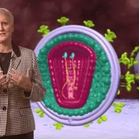 Βίντεο: κύκλος ζωής του HIV