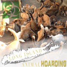 Long Island Animal Hoarding