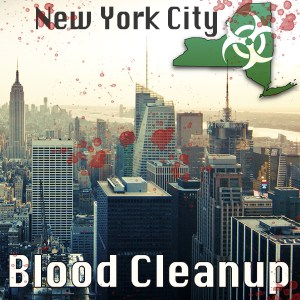 NYC lood Cleanup