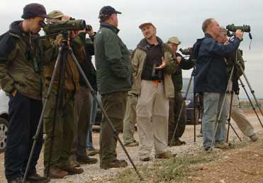 British birders visiting Catalonia drylands